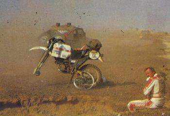kies-1983