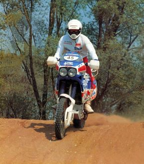 tony1991-1